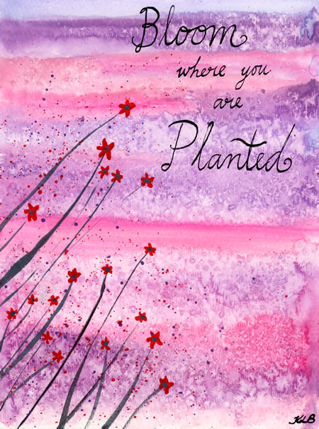 bloom_where_you_are_planted_small